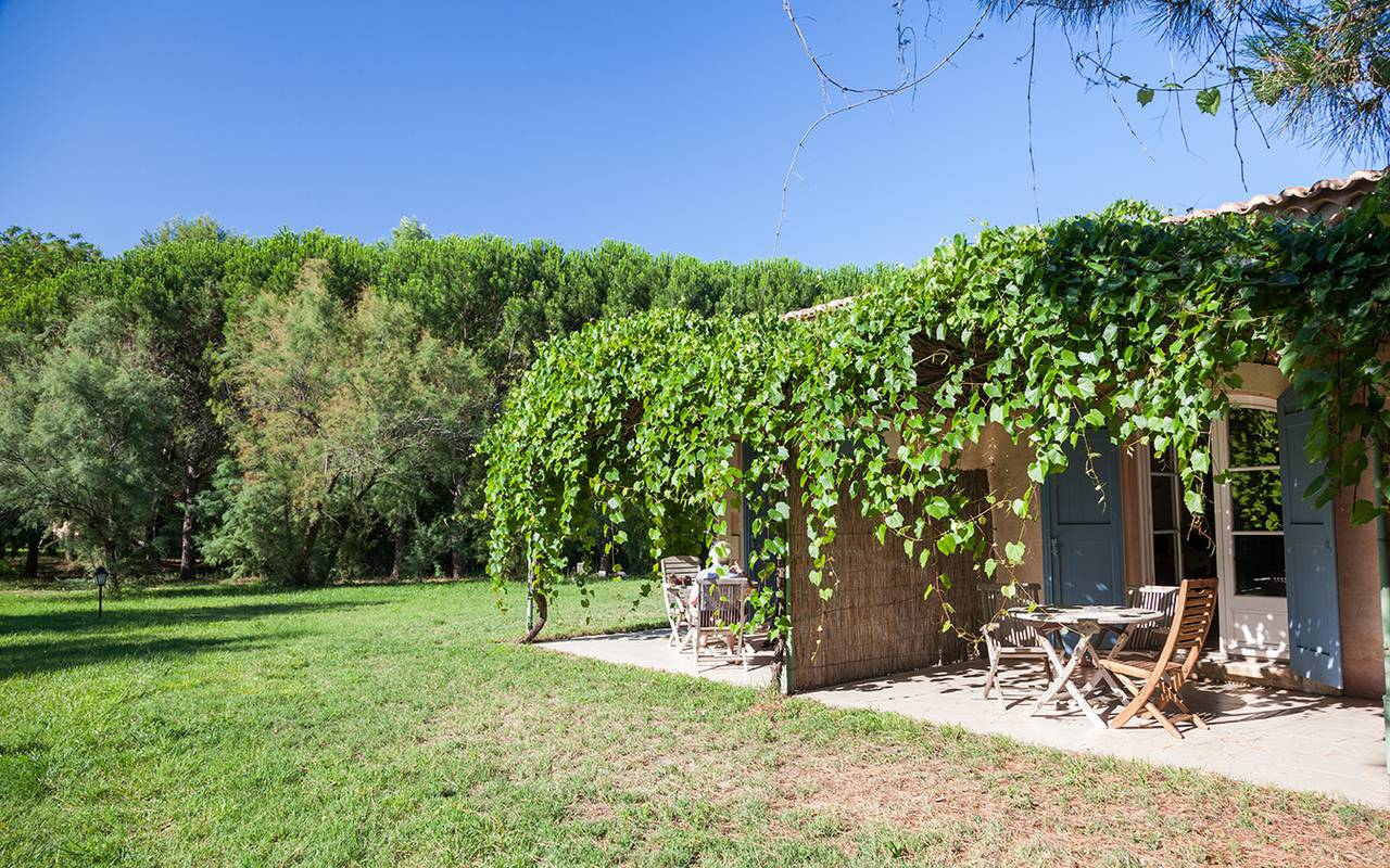 Grapevine house charming hotel Camargue